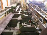 Empresas Forestales En Venta - Únase A Fordaq - Venta Aserradero Rusia