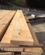 Find best timber supplies on Fordaq - Agro -Trading LLC - Good Quality Ash Lumber