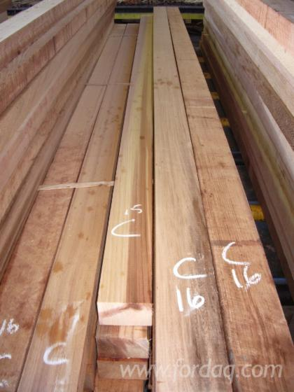 100 mm Air Dry (AD) Western Red Cedar Planks (boards) from Canada