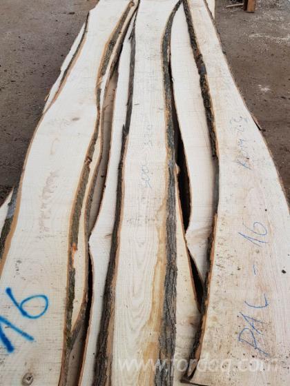 Wholesale White Ash B 1 Kiln Dry (KD) Loose Serbia