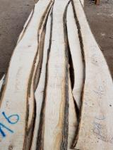 Find best timber supplies on Fordaq - EKODRVO 004 d.o.o. - White Ash Loose Serbia