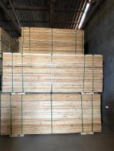Pine Lumber KD Mill Run