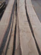 Finden Sie Holzlieferanten auf Fordaq - Timberlink Wood and Forest Products GmbH - Loseware, Eiche