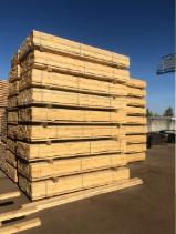 Find best timber supplies on Fordaq - Albionus SIA - KD, Edged Spruce, Pine Timber from the manufacturer