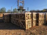 薪材、木质颗粒及木废料 - 劈切薪材 – 未劈切 碳材/开裂原木 鹅耳枥, 榉木, 橡木