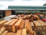 African wood (Tali, Padouk, Okand, Azobé, Ekop, Sapelli, Doussié...)