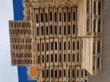 Trouvez tous les produits bois sur Fordaq - Vend Euro Palette EPAL Recyclée - Occasion En Bon État Бельгия Германия Russie