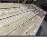 Drewno Lite, Kaningamia Chińska , Świerk , Panele Ścienne Wewnętrzne