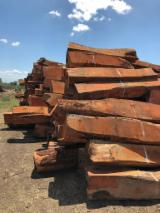 Find best timber supplies on Fordaq - COURTEX-MADERAS TROPICALES S.L. - 40-110 m African Rosewood, Machibi, Rhodesian Copalwood Square Logs Spain