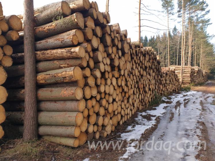 Logs Purchasing Manager in Czech Republic