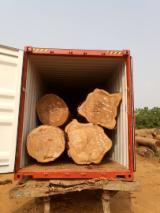 Tali (Erythrophleum Suaveolens) Industrial Logs, 80+ cm
