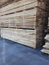 木板, 黄杨树(郁金香木)