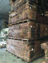 Find best timber supplies on Fordaq - Panarotto Legnami S.p.a. - Walnut Boules, 32-80 mm