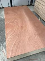 Sapele Plywood/High Quality Commercial Plywood for Exporting