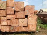 方形原木, 缅茄(苏)木