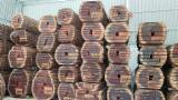 Trouvez tous les produits bois sur Fordaq - AGRO-FEED - Vend Grumes Équarries Padouk