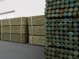 Troncos De Madera Aserrada En Venta - Fordaq - Venta Postes Pino Silvestre - Madera Roja Italia