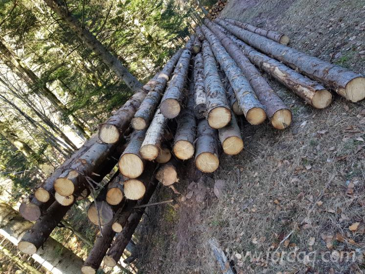 Spruce 20-30 cm BC Saw Logs from France