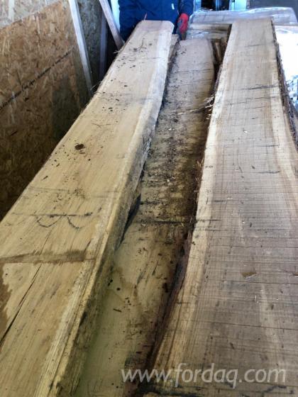 Oak-loose-timber