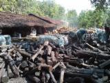 Energie- Und Feuerholz Holzkohle - Holzkohle