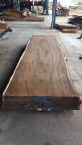 木板, 锈色合欢木