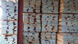 硬木:毛边材 - 毛刺 - 圆柱 克罗埃西亚 - 疏松, 橡木
