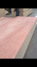 Bintangore 16mm/Qualified Commercial Plywood