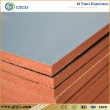 18mm Black Film Finger Joint Construction Plywood For Concrete Formwork