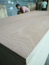 2.7/4.5/18 mm Sapelli Plywood Hardwood Core.