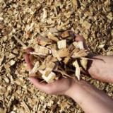Leña, Pellets Y Residuos - Venta Astillas De Madera De Aserradero Haya, Abedul, Roble Ucrania