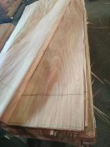 木皮供应网络 - 批发硬木木皮和热带木木皮 - 褐红娑罗双木, 旋切