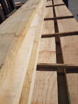 Find best timber supplies on Fordaq - TAVELLA GIORGIO E FIGLI SNC - Brown Ash Planks (boards) FAS (firsts and seconds) Italy