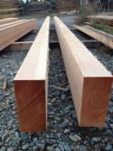 Find best timber supplies on Fordaq - Agro -Trading LLC - Glulam Oak Beam and Panels