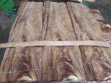 Brown Wood Crotch