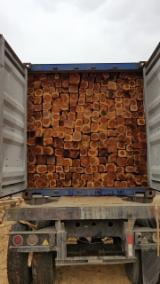 Find best timber supplies on Fordaq - MADERAS y MADERAS SA - Squares, Teak