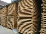 null - Looking for schima planks (boards) India and Malaysia
