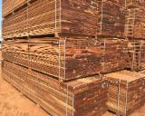 Dibetou Planks (boards) AIC from Cameroon