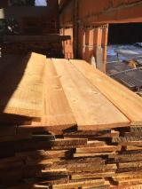 锯材及结构木材 - 落叶松