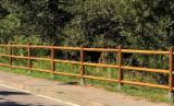 Trova le migliori forniture di legname su Fordaq - Losa Legnami s.r.l. - Recinzione 3 fori