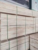 Platten Und Furnier Asien - Shengbaolun, Pappel
