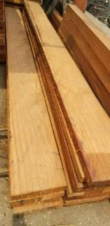 Iroko, padouk, pachy and sapelli lumber
