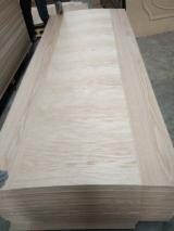 Natural Oak door skin flush design