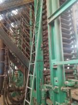 Vendo Produzione Di Pannelli Di Particelle, Pannelli Di Bra E OSB Shanghai Usato Cina