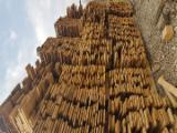 Hardwood Lumber Loose For Sale - Loose, Oak
