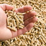 Firewood, Pellets and Residues - Pellet/Prina/Olive/Wood Chips Required