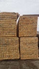 Find best timber supplies on Fordaq - Albionus SIA - AD Pine/Scots Pine Sawn Timber, 37-87 mm