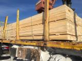 null - 25-100 mm Fresh Sawn Siberian Larch from Russia