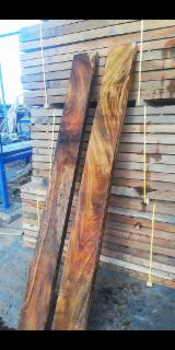 Saman sawn Timber.