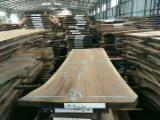 Find best timber supplies on Fordaq - Dongguan Seeland Wood Limited - Black walnut slab for luxury furniture use