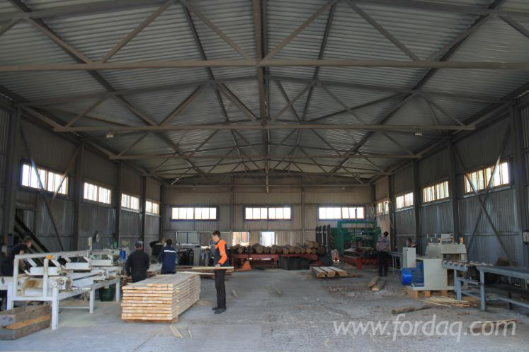 Sawmill For Sale Belarus